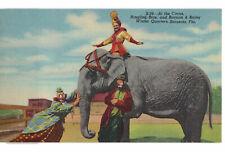 LINEN POSTCARD RINGLING BROS CIRCUS SARASOTA FLORIDA ELEPHANT CLOWNS RIDER