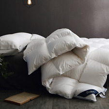 Globon Fusion Goose Down Comforter Queen Size, Heavy Weight For Winter, 50Oz, 65