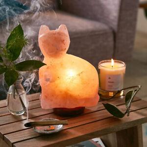 3Kg Natural Himalayan Salt Lamp Healing Ionizing Pink Rock Crystal CAT LAMP Gift