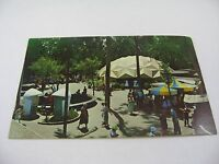 Vintage San Diego Zoo Postcard Color Series Children's Zoo