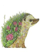 PAGAN WICCAN FINE ART GREETING CARDS Hedgehog BIRTHDAY Animals DM COLLECTION B