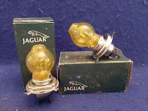 2x OEM Jaguar Amber Headlamp JLM-9599 XJS XJ6 XJ12 Daimler Saloon Headlight Bulb