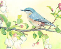 "Original artwork gouache/watercolor painting wild bird on paper, wildlife 8×10"""