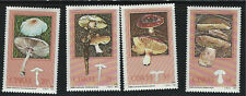 SouthAfrica-Ciskei-Poisonous Mushrooms MNH 1982 (4v)