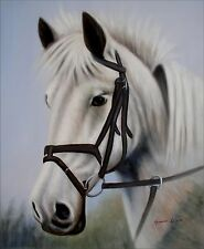 White Horse Head Portrait, Hand Painted Oil Painting, 20x24in