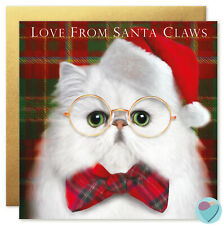 Christmas Cards CAT friends and family to from Persian Chinchilla Cat Lovers