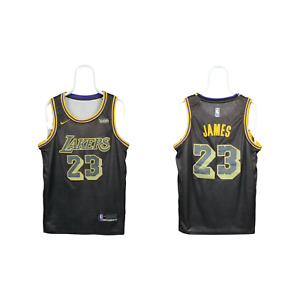 Mens Nike Los Angeles Lakers James 23 NBA Jersey Tank Top Brown Size S