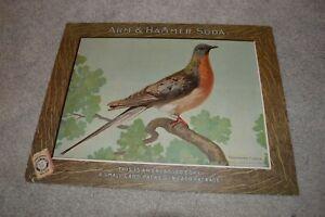 Antique Arm & Hammer Passenger Pigeon Baking Powder Sign