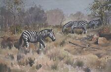 Enslin Vorster (South African, b. 1934).  Watercolor.