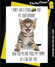Birthday Greetings Card Funny Adult Cheeky Rude Quirky Insult Kitten  c59