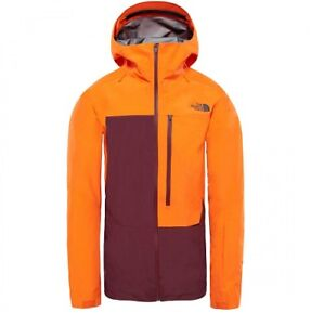 NORTH FACE FREE THINKER GORE-TEX JACKET NWT MENS LARGE   $549