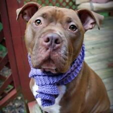 Lavender Crochet Scarf for Dogs (CTS005L)- Free Shipping