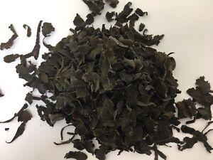 Bladderwrack 50g Herb Dried Algae Fucus vesiculosus Thallus cut seaweed Kelp