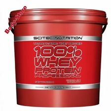 100 Whey Protein Shaker und Proben Scitec Schokolade