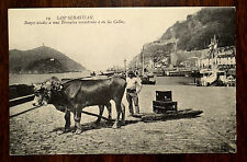 Oxen Team Pulling A Sled San Sebastian Spain Postcard ca.1920