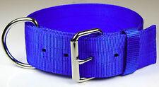 "Dog Collar 2"" - Pitbull Type Heavy Duty Yard Collar Pig Dog Bull Terrier - Blue"