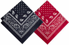 Salt+Dapper Set of 2 Pocket Squares Navy & Red Paisley Bandanna 12 inch Square