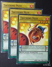 Set 3X TACCHINO MITE Mild Turkey MACR-IT095 Pendulum Comune in Italiano YUGIOH