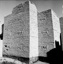BABYLONE c. 1960 - Porte d'Ishtar Côté Intérieur - Négatif 6 x 6 - IRAK 11