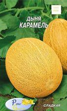 graines  de melon  Caramel  - 30 graines