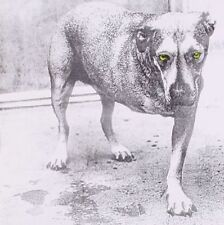 Alice in Chains - CD 6cmg