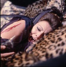 Ekta transparency original Sophia Loren El Cid Anthony Mann