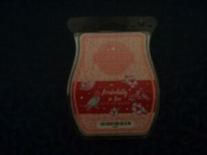 Scentsy Wax Melts - Accidentally In Love