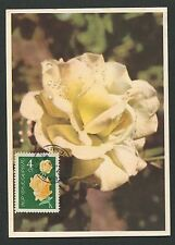 BULGARIA MK 1964 FLORA ROSEN ROSE ROSES MAXIMUMKARTE CARTE MAXIMUM CARD MC d6321