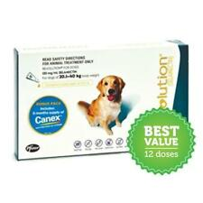 Revolution for Dogs 20-40kg Teal 12 Pack monthly heartworm and worming