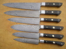 CUSTOM MADE DAMASCUS BLADE 6 Pc's. KITCHEN KNIVES SET A-E 71 - H