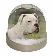 American Staffordshire Bull Terrier Dog Photo Snow Globe Waterball St, AD-SBT9GL
