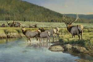 Funny Gifts Home Art Wall Decor Deer Oil Painting Picture Printed on canvas