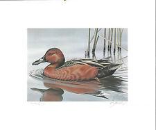 1985 Federasl Duck Stamp RW52 Cinnamon Teal Painting Print G Mobley Medallion Ed