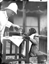 German East Africa Burundi Rwanda Tanzania Chimpanzee Tea 1906 5x4 Inch Photo