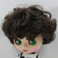RBL Scalp /& Dome Silver Grey Hair With Bangs For Blythe Doll Japan/'s Hair