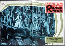 EARTH vs THE SPIDER orignal movie poster KENNEY, KEMMER, gordon  ITALIAN RELEASE