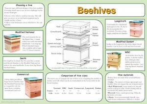 Beekeeping Posters, set of 9, includes feeding, hives, disease, swarm, dance