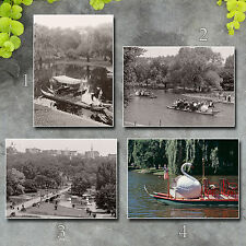 Boston MA Public Gardens romantic swan boat 1900s photos 5x7s or request 8x10 or