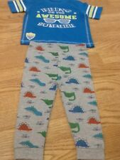 Brand New Baby Boys Size 18-24 Months Blue T-Shirt & Dinosaur Pants