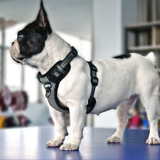 Reflective No Pull Front Leading Dog Harness Chest Vest for French Bulldog L