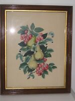 VTG WATERCOLOR CHARLES ADAMS SIGNED FRAMED FRUIT PEARS 21 1/2 '' X 26 1/2 ''