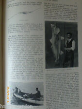 Sea Fishing & Shark Fishing Old Antique Photo Illustrated Article 1911 Eel Meran