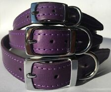 Small Medium Large Purple Leather Dog Collar