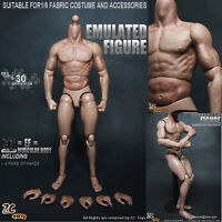 """12"""" Muscular Action Figure Body 1/6 Scale For 1/6 Scale Hot Toys Head Sculpt toy"""