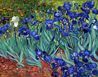Irises by Vincent Van Gogh, Giclee Canvas Print, in various sizes