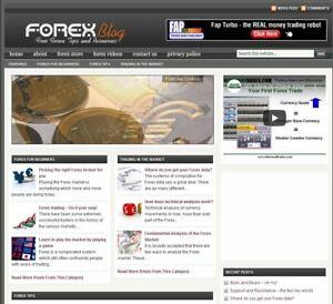 Geld Verdienstquelle! Webprojekt, Blog, Nischenseite zum Thema Trading - Forex