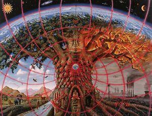 Gaia Alex Grey Poster 13x19 Art Print High Quality Psychedelic Trippy B2G1 Free