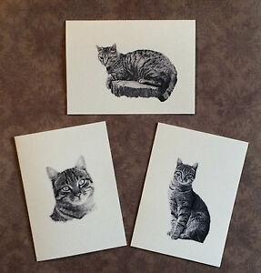 Set of 12 Handmade Blank Tabby Cat Print Note Cards