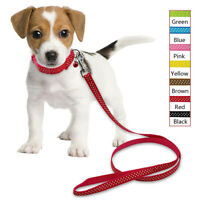 Cute Nylon Polka Dots Dog Collar and Lead Pet Walking Leash for Small Puppy Dogs
