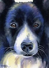 Border Collie Dog Watercolor 8 x 10 Art Print by Artist Djr
